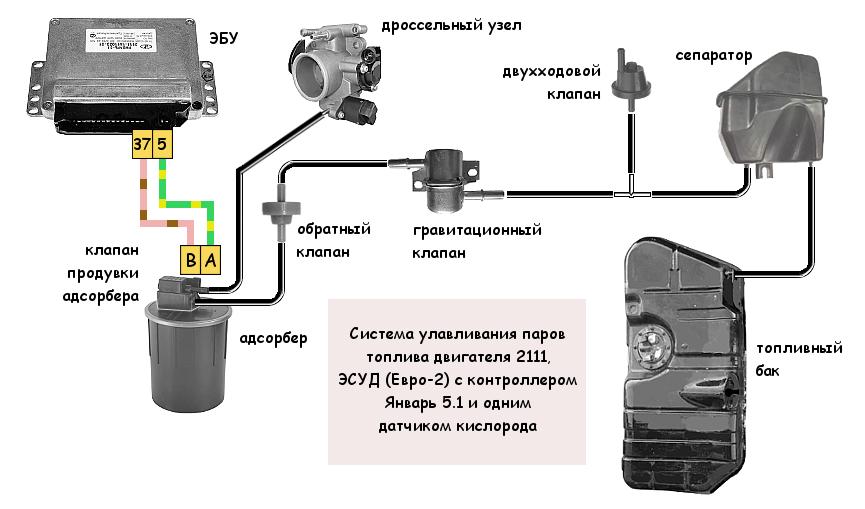 Система улавливания паров топлива двигателя 2111 (ЭСУД Январь 5.1 Евро 2)