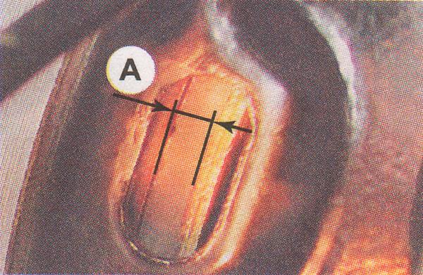 толщина задних колодок